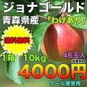 【訳あり★期間限定】青森県産ジョナゴールド 46玉入 約10kg ※北海道、沖縄県離島は
