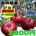 【送料無料★クール便使用】青森県産ジョナゴールド 約10kg  サイズばらばら 3800