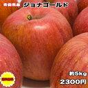 訳あり 青森県 ジョナゴールド 5kg 送料無料 りんご 5