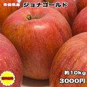 訳あり 青森県 ジョナゴールド 10kg 送料無料 りんご 10kg ジョナゴールド ご家庭用