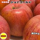 りんご 訳あり 5kg 青森県 ジョナゴールド 5kg 送料