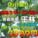 【訳あり★送料無料】青森県産王林りんご 約10kg 糖度保証 サイズいろいろ クール