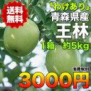 【訳あり★クール便送料無料】青森県産王林りんご 約5kg 糖度保証 サイズいろいろ