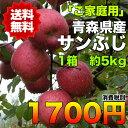 【ご家庭用】青森県産サンふじりんご 約5kg 糖度保証 サイズいろいろ  ※北海道・沖縄離島は除く【RCP】
