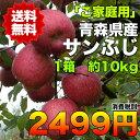 【ご家庭用】青森県産サンふじりんご 約10kg 糖度保証 サイズいろいろ  ※北海道・沖縄離島は除く【RCP】