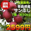 【ご家庭用】青森県産サンふじりんご 約10kg 糖度保証 サイズいろいろ  ※北海道・沖縄離島は除く