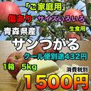 【ご家庭生食用】青森県産サンつがる 約5kg サイズいろいろ 2016年度収穫分 糖度保証★クール便別途送料必要【RCP】