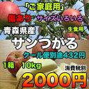 【ご家庭生食用】青森県産サンつがる 約10kg サイズいろいろ 2016年度収穫分 糖度保証★クール便別途送料必要【RCP】