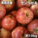 訳あり 青森県産 サンつがる 10kg サイズいろいろ 送料無料 ご家庭用 りんご 訳あり 10Kg 青森