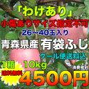 【訳あり】青森県産有袋ふじりんご 約10kg サイズ指定不可 糖度13度保証 4500円