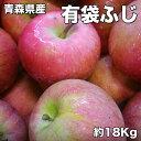 訳あり 青森県産 有袋 ふじ りんご 18kg 糖度保証 サ