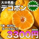 【送料無料】大分県産 デコポン 約3kg(6〜15玉入り)【RCP】 フルーツ/くだもの/お取り寄せ/贈り物 ギフト/贈答品/食品