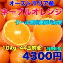 オーストラリア産 ネーブルオレンジ 約10kg 糖度保証 44玉前後 クール便別途送料