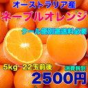 オーストラリア産 ネーブルオレンジ 約5kg 糖度保証 22玉前後 クール便別途送料必