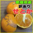 【わけあり】話題の柑橘 愛媛県産せとか Lサイズ 約5kg ※ 送料別途必要【RCP】