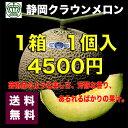 【送料無料】高級ブランド 静岡県 クラウン メロン【白クラス】 1箱 1個入り 約1.5kg