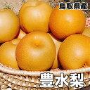鳥取県産 豊水 梨 5kg 8〜20玉 送料無料 お試し 訳...