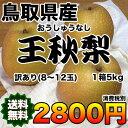 【送料無料 ★ 訳あり】鳥取県産王秋梨 約5kg 【RCP】