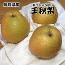 訳あり 鳥取県産 王秋 梨 5kg 送料無料 梨 なし おうしゅう 5Kg お歳暮 ギフト