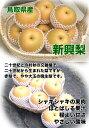 肉付一本胴がら(鶏がら)約230g×5本入【鳥取県産】【冷蔵】