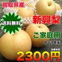 【送料無料】鳥取県産新興梨 約5kg(8〜18玉) ご家庭用 【RCP】