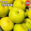 鳥取県産 20世紀 梨 5kg 10〜20玉 訳あり お試し...