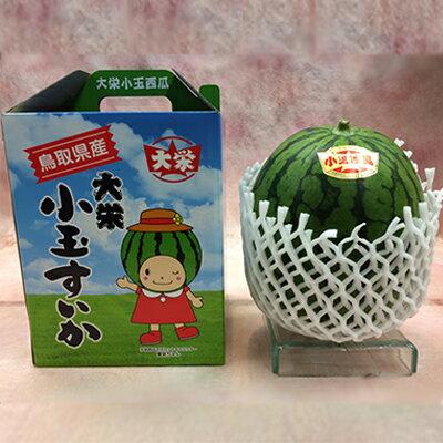 【送料無料】鳥取県産大栄小玉西瓜 約2.5kg...の紹介画像2