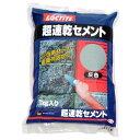 LOCTITE(ロックタイト) 超速乾セメント 灰色 1kg DCG-01K【クーポン配布中】