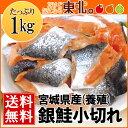 宮城県産銀鮭小切れ・切り落とし1kg/送料無料/鮭/さけ/サケ/宮城/東北/