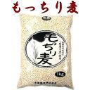 もっちり麦 もち麦 1kg 【送料無料】テレビで話題!国