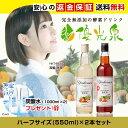【送料無料】 酵素ドリンク 無添加 ファスティング 【優光泉...