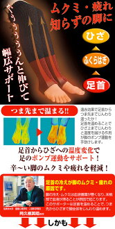 ★ immediate delivery far red material seraph & thermal insulation material silk 100 his twenties! Feet gradually! and stage warm thermal rise ~ stretch ~ 100% silk in toe line other ~! Only the cold winter chill of akune teacher relieved ankle braces