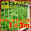 【5月下旬入荷予定】目隠しグリーンフェンス 1m×3m★ライトグリーン★   グリーンカーテン 緑の