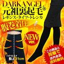 Dark Angel (ダークエンジェル)