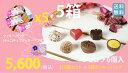 世話チョコ・ファミチョコ・自分へのご褒美にも♪(計5箱セット+クッキーバッグ5袋)人気のアソート6種