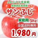JAふくしま未来 伊達地区本部産「サンふじ」ご家庭用5kg1,980円【お得用】【送料無料】