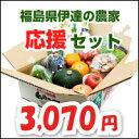 福島県伊達の農家応援野菜・果物詰め合わせセット