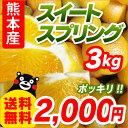 ■熊本県産 スイートスプリング■ 高級みかん 3kg 【送料無料】【訳ありみかん】【完熟】【九州 熊本】