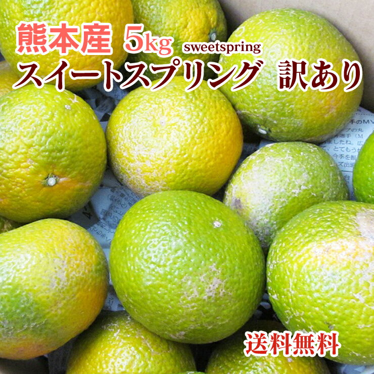 【 送料無料 】熊本産 スイートスプリング 訳あり ご家庭用 10kg