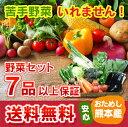 ≪送料無料≫ 九州熊本産定番野菜7品以上保証安心くまもとミニ野菜セット
