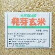 那須自然農園の発芽玄米≪500g≫(MOA自然農法米)【野菜セットと同梱で送料無料】【九州 熊本】