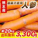 冬季限定販売■熊本産人参 農薬不使用■ 約20kg【送料無料】【九州 野菜】【ニンジン】【キャロット】【根菜】
