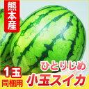 熊本産 小玉スイカ ひとりじめ 1玉 【 野菜セットとの同梱...