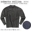 Roberto Collina ロベルト...