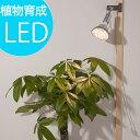植物育成LED PlantLight18W 白色クリップタイプ(SUN-18W)+(プラントクリップ