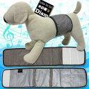 犬服 マナーベルト ブラウン(超小型犬から中型犬用)【メール便なら送料無料】マナーバンド ドッグウェア 犬の服