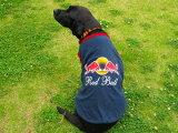 Red Bull(レッドブル)★タンクトップ(中型犬用)【犬服2点購入でメール便】犬の服 ドッグウェア