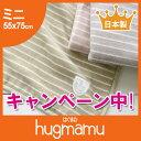 【日本製】蒸れにくく、ちくちくしない綿100%綿毛布ミニサイズ〔ボーダー〕ベビーカーでも使いやすいブランケットミニサイズ ひざ掛けにも♪