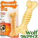 USA直輸入☆ Nylabone ナイラボーン デュラチュウ テクスチャーボーン ウルフサイズ 噛む 犬用おもちゃ