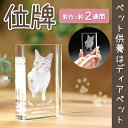 【ペット位牌】クリスタル位牌 ブッククリスタルペット供養 ペットロス メモリアル ガラス クリスタル 犬 猫 うさぎ 49日 おしゃれ きれい かわいい 写真 遺影 自宅